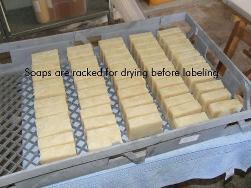 Speciality soap bars drying